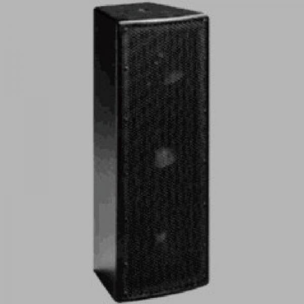 H605陣列式喇叭 1